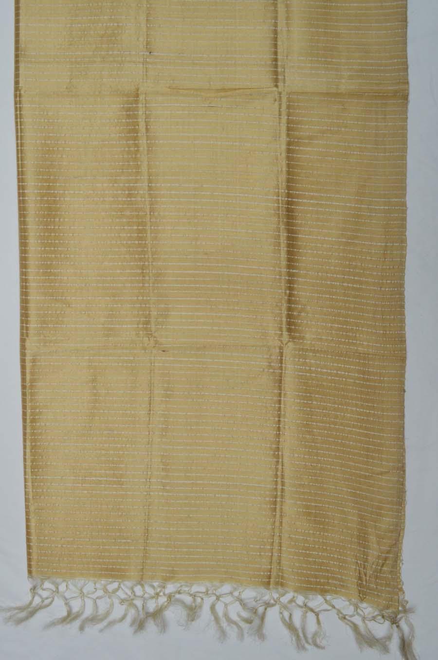 Tussar Silk  3834