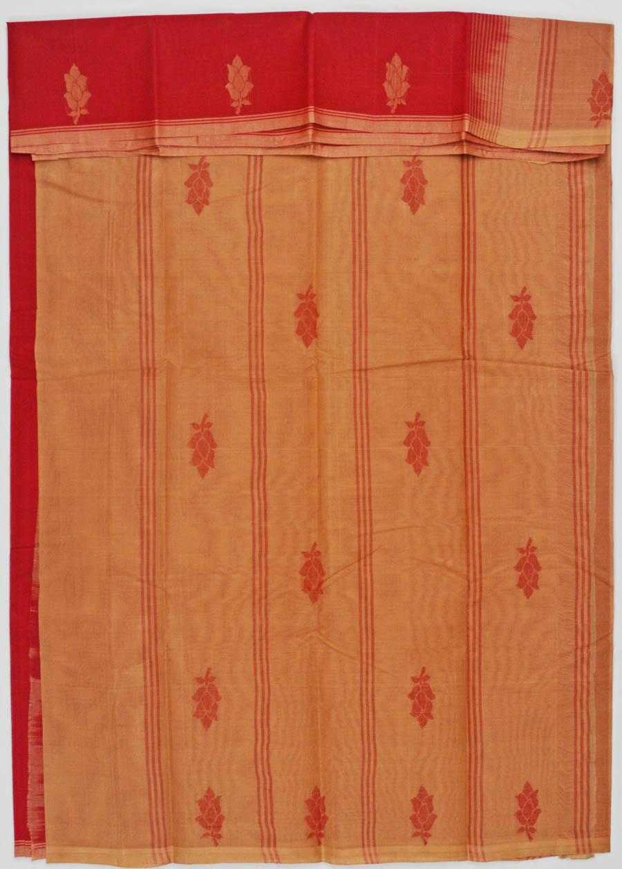 Kanchi Cotton 5494